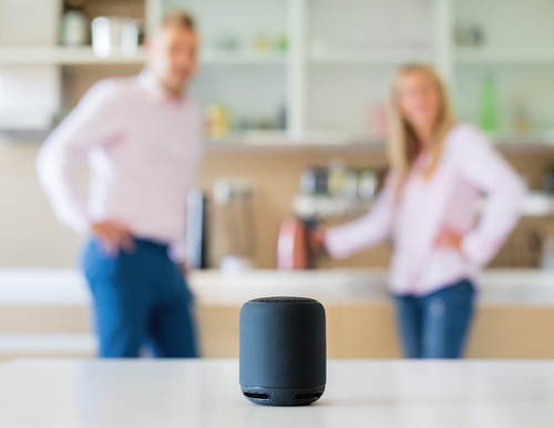 The Power of Voice Technology
