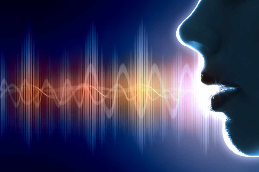 Voice Technology for Brands Blu.ai